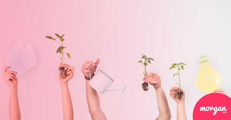 Sostenibilidad y ecologia gana protagonismo en youtube